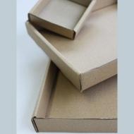 Plateaux carton 2