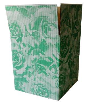 Impression carton - Aplat vert